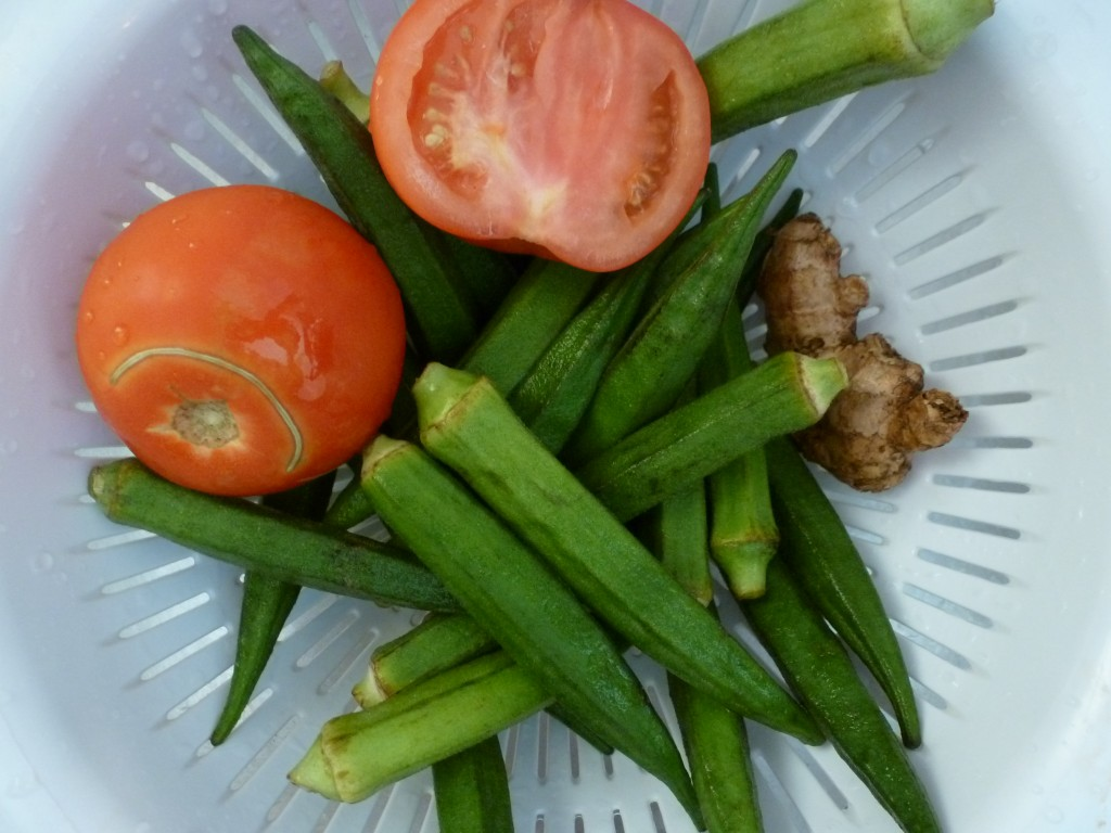 Tomatoes, Okra, and Ginger